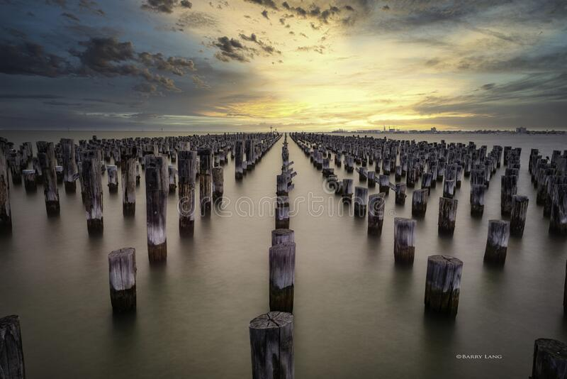Pilings of an old pier royalty free stock images