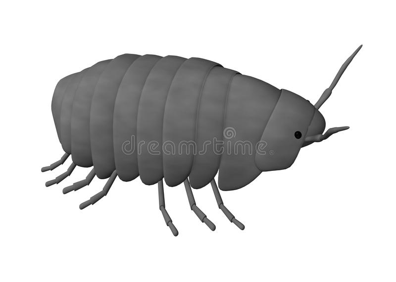 Pill bug. 3d render of pill bug stock illustration