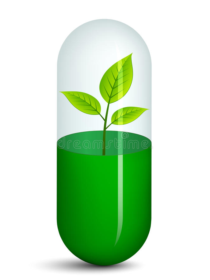 Download Pill with plant stock vector. Image of branch, medical - 23669728