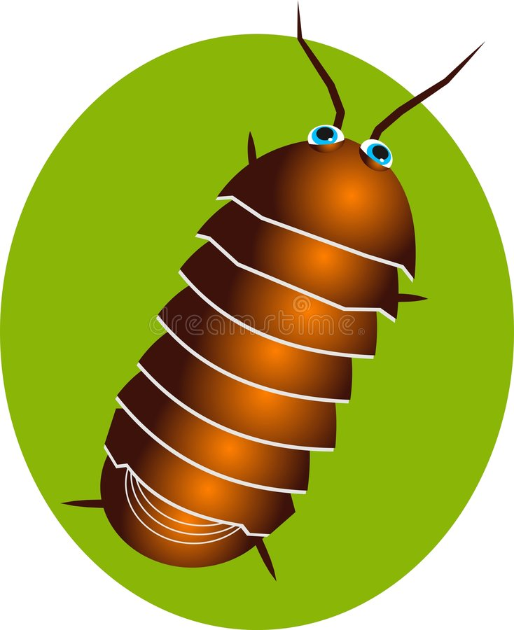 Pillbug. Insect illustration stock illustration