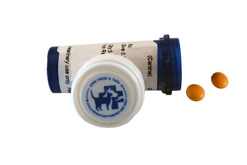 Pillole per il cane o il gatto fotografie stock