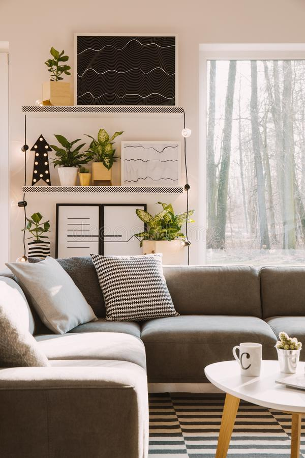 Pillows with pattern on grey corner couch standing in bright Nor. Dic living room interior with posters, green plants, lamps and window royalty free stock image