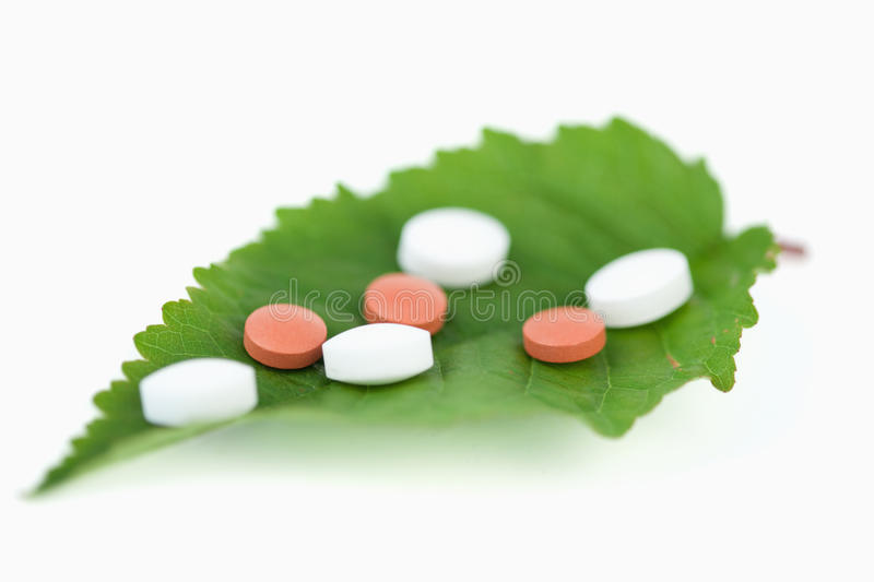 Download Pills on a leaf stock photo. Image of green, medication - 19888378