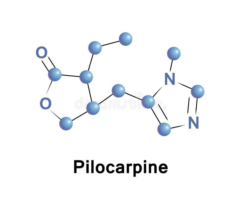 Pilocarpine är en läkarbehandling vektor illustrationer