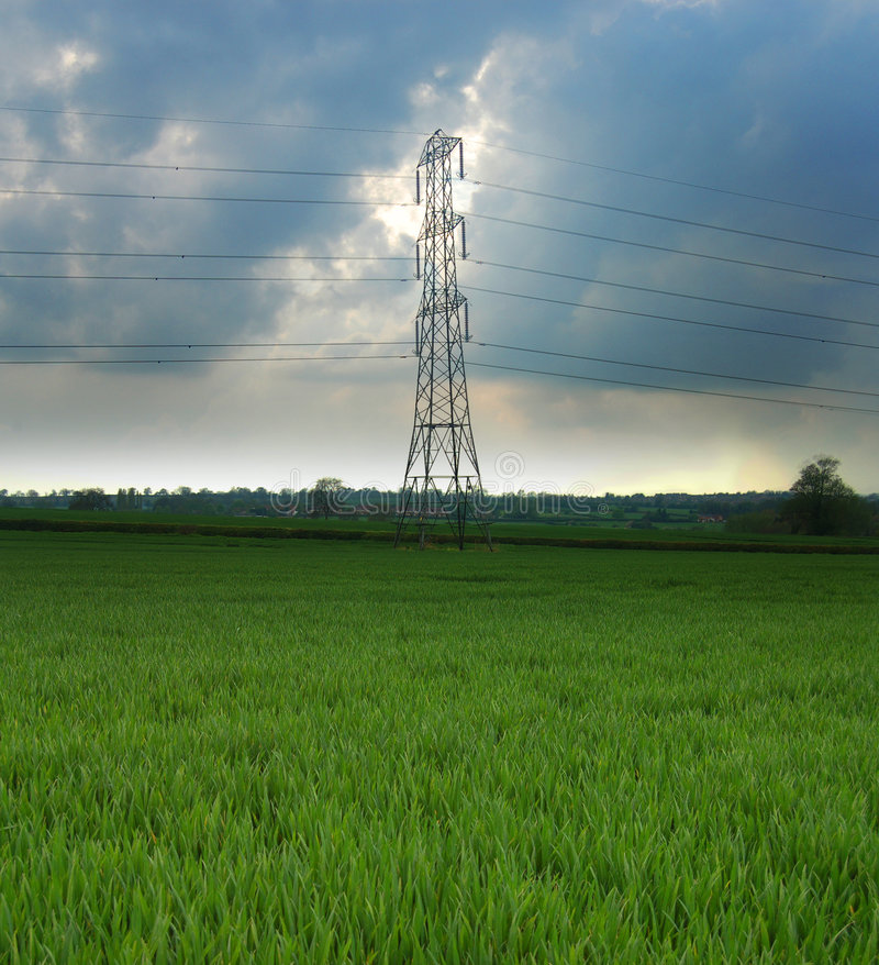 Pilon elétrico em um campo verde fotografia de stock