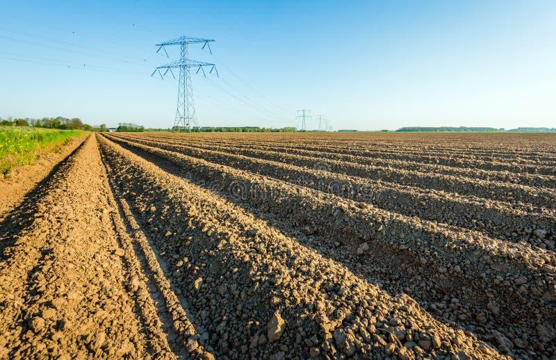 Pilones de alto voltaje en un paisaje agrícola en el Netherla foto de archivo libre de regalías