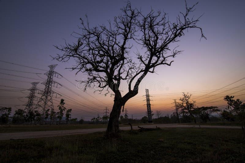 Pilones de la electricidad de la silueta imagenes de archivo