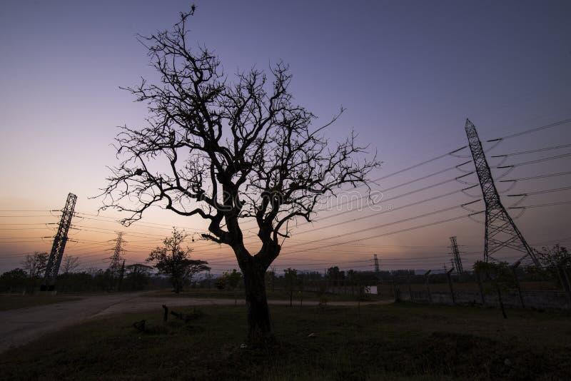 Pilones de la electricidad de la silueta imagen de archivo libre de regalías