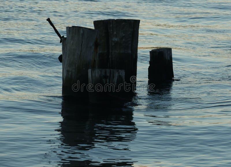 Pilones en agua en la puesta del sol fotos de archivo