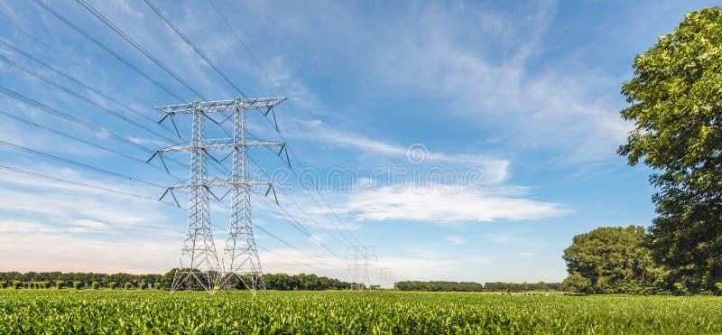 Pilones y cables de la electricidad en un paisaje agrícola con imágenes de archivo libres de regalías