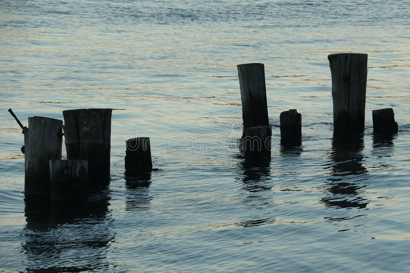 Piloni in acqua al tramonto fotografia stock