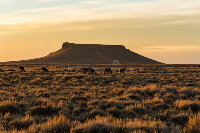 Pilot Butte, Wyoming lizenzfreie stockfotografie