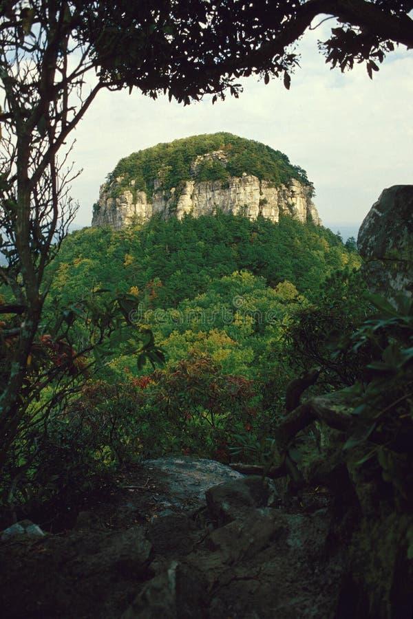 Download Pilot Mountain, NC stock image. Image of metamorphic - 28360633