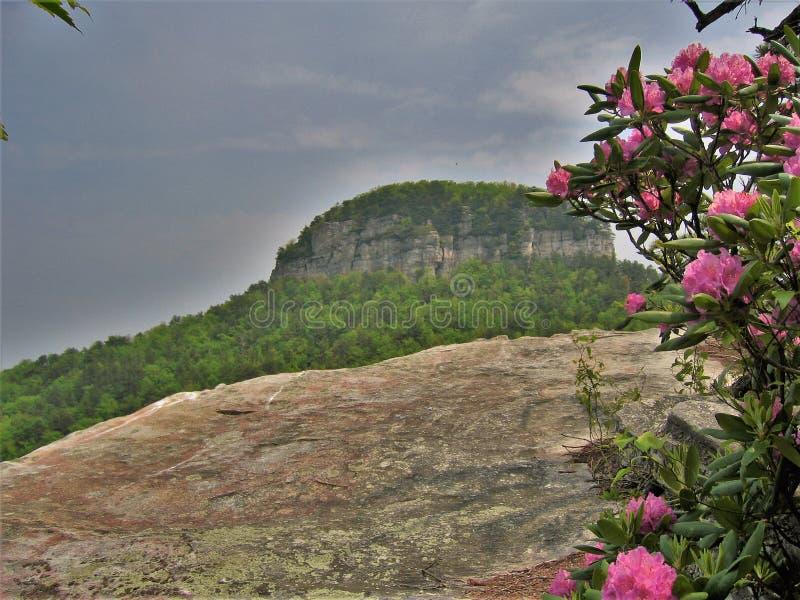 Pilot Mountain State Park Pinnacle royalty free stock photos