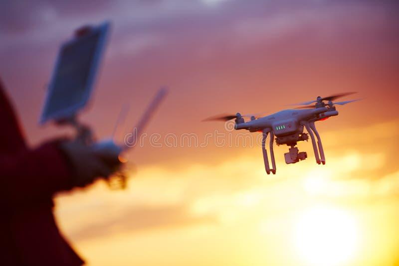 Pilotaje del abejón en la puesta del sol foto de archivo