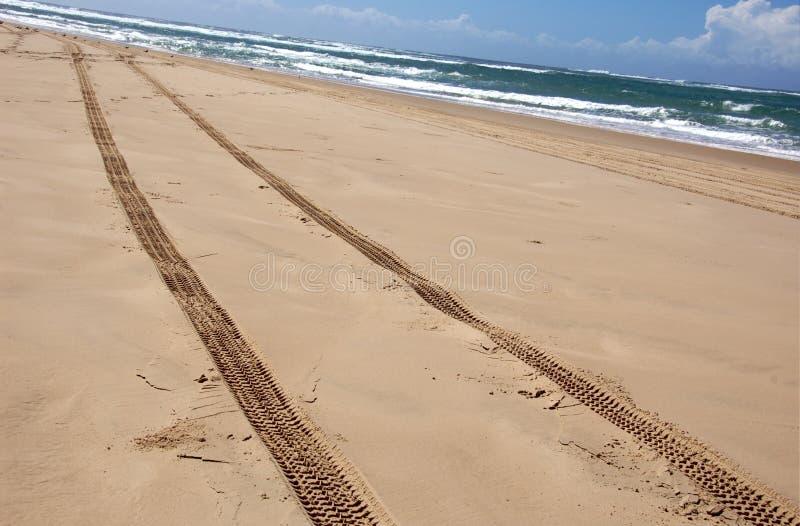Piloter australien de plage photo stock