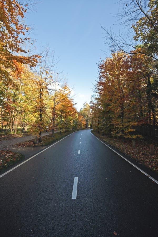 Piloter la route dans l'automne photo libre de droits
