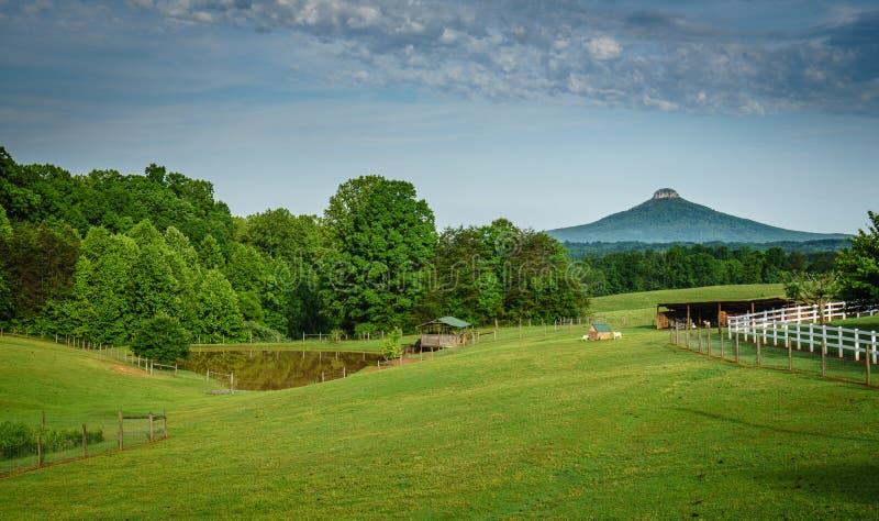 Pilotowa góra, NC nad rodziny gospodarstwem rolnym fotografia royalty free