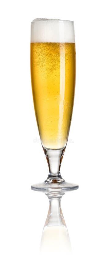 Pilsner beer stock images