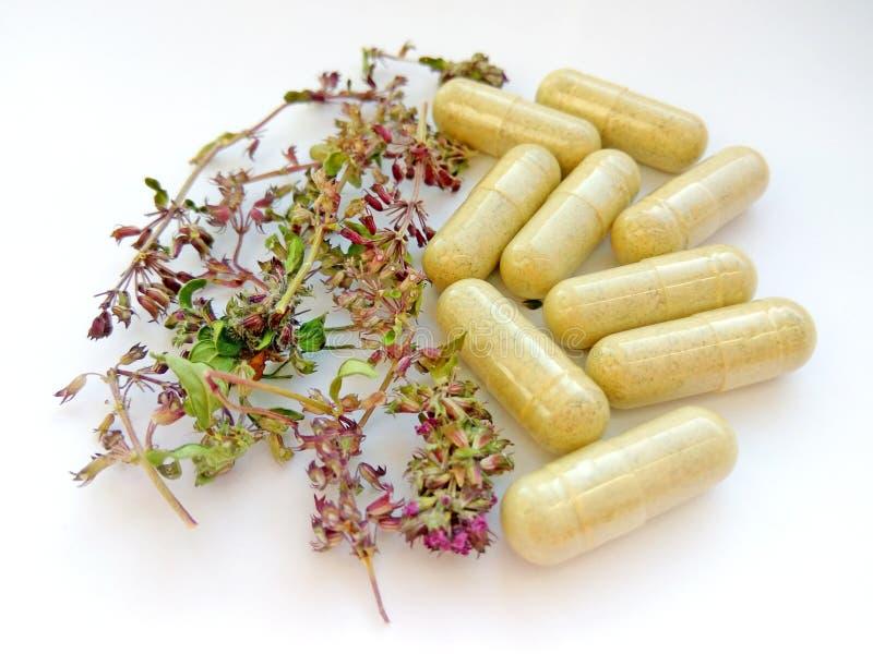 Pilules de phytothérapie avec les herbes naturelles sèches sur le fond blanc Concept de phytothérapie et de suppléments diététiqu photos libres de droits