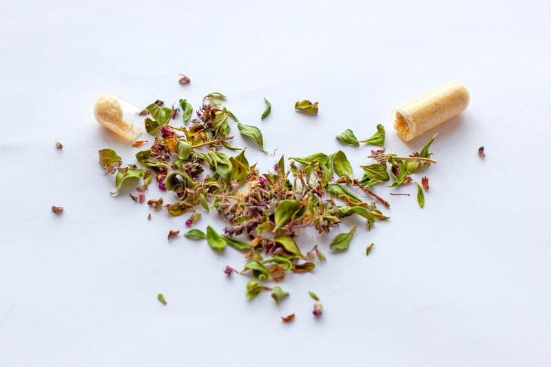 Pilules et capsules nutritionnelles de suppl?ments sur le fond sec d'herbes Phytoth?rapie, naturopathy alternatifs et hom?opathie photo libre de droits
