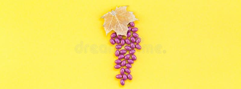 Pilules nutritionnelles d'extrait de graine de raisin de supplément image libre de droits