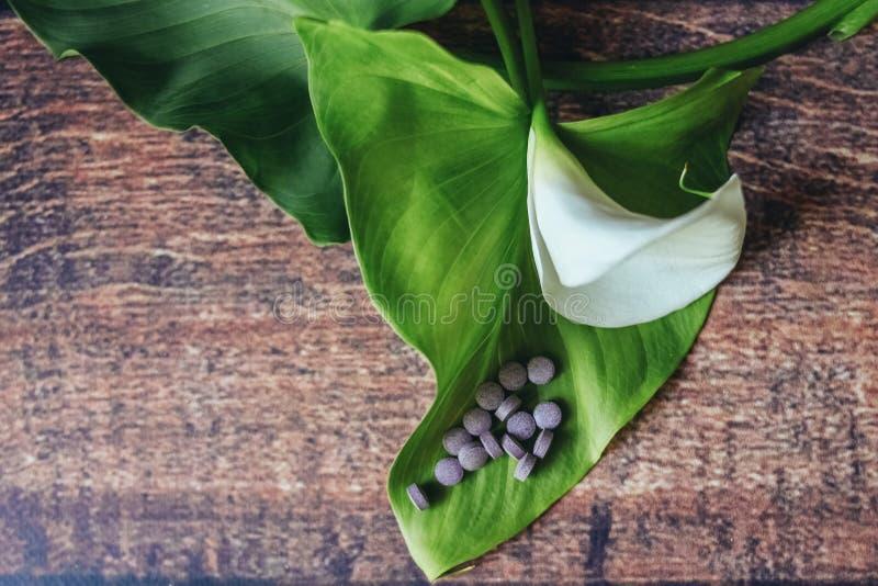Pilules pourpres sur une belle feuille de fleur blanche photographie stock