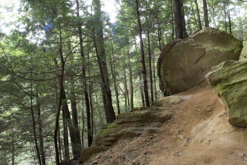 Pilz bedeckte Felsen lizenzfreie stockbilder