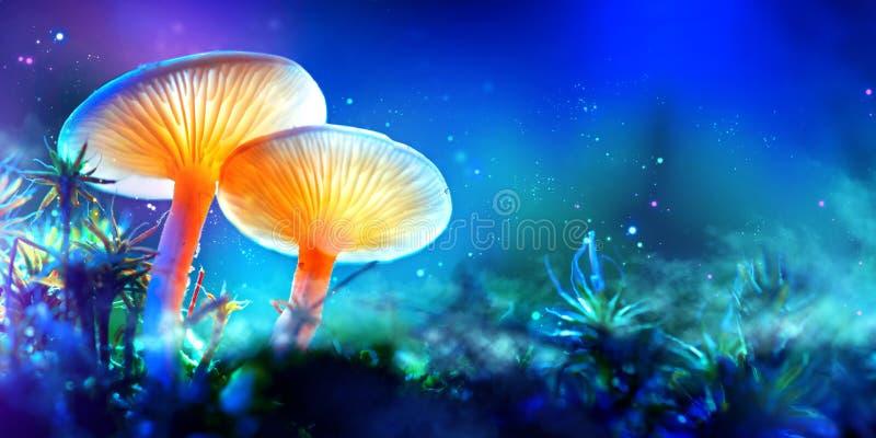pilz Glühende Pilze der Fantasie im Geheimnisdunkelheitswald lizenzfreie stockfotos