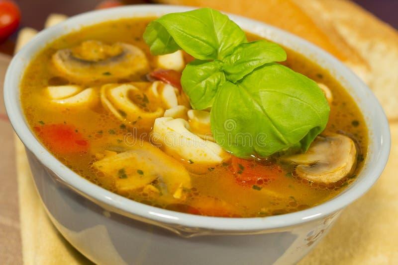 Pilz Tortellini-Suppe lizenzfreie stockbilder