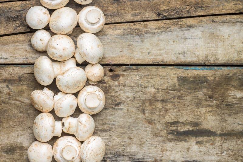 Pilze auf hölzernem Hintergrund stockbilder