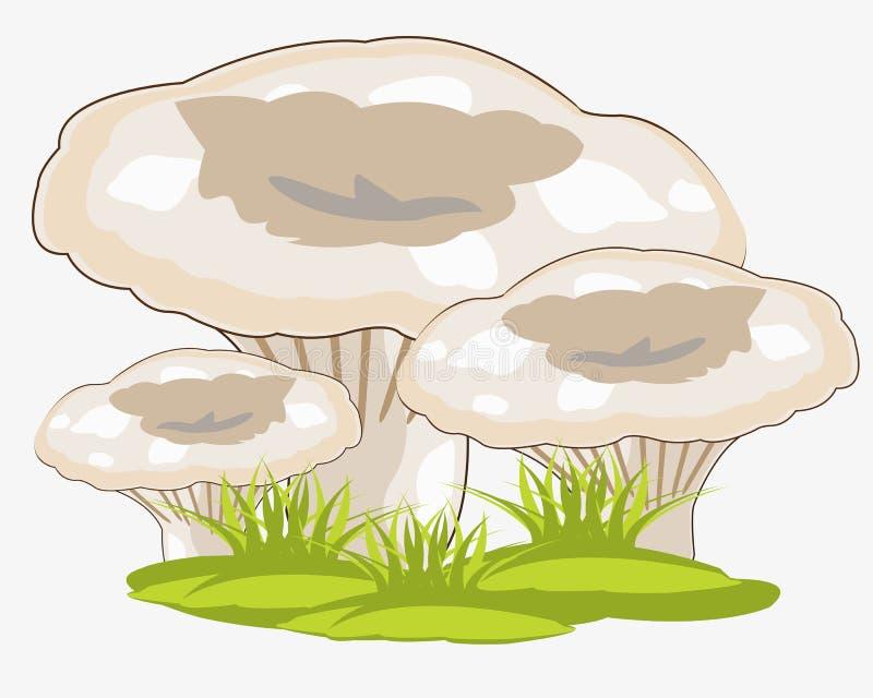 Pilze im Kraut stock abbildung