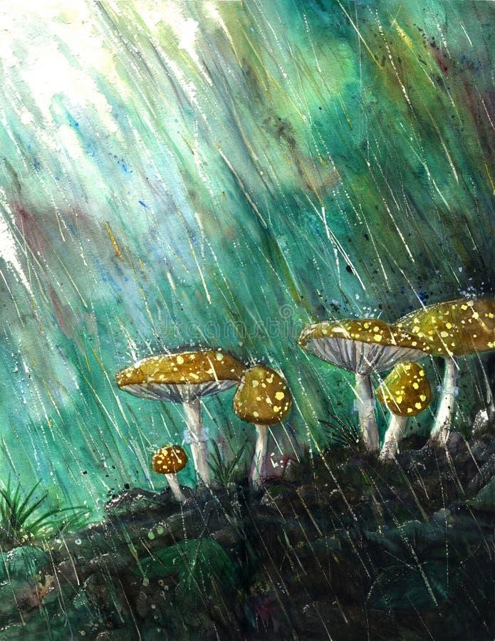 Pilze im Regen lizenzfreie abbildung