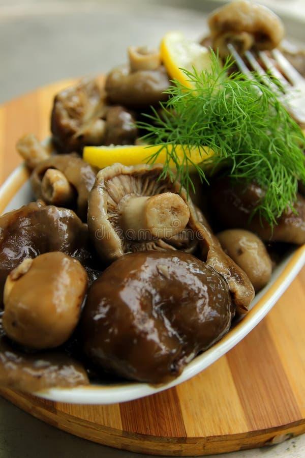 Pilze, mariniert und mit Gewürzen gewürzt lizenzfreies stockbild