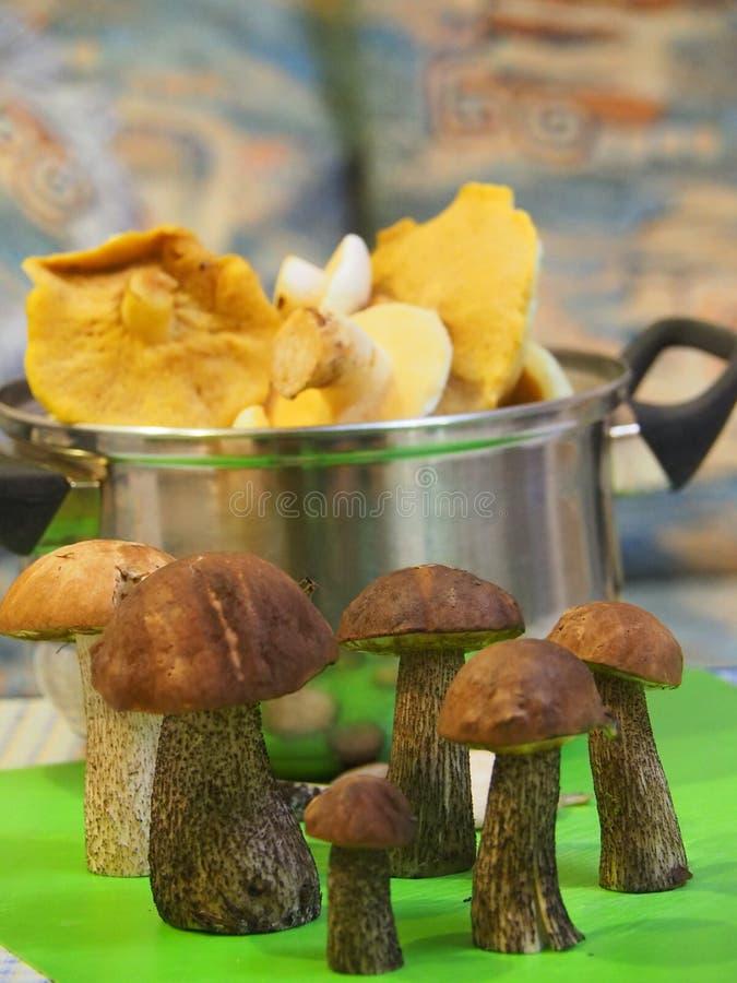 Pilze, zum des Abendessens vorzubereiten lizenzfreies stockfoto