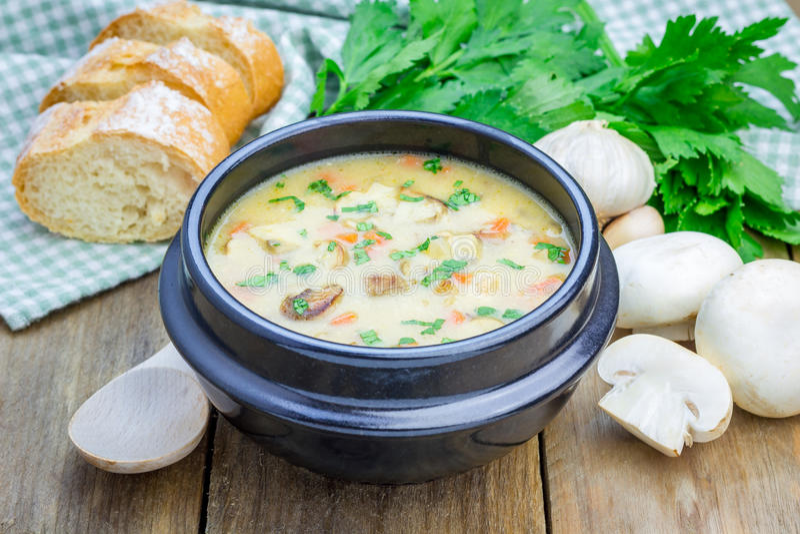 Pilzsuppe mit Huhn lizenzfreie stockfotos