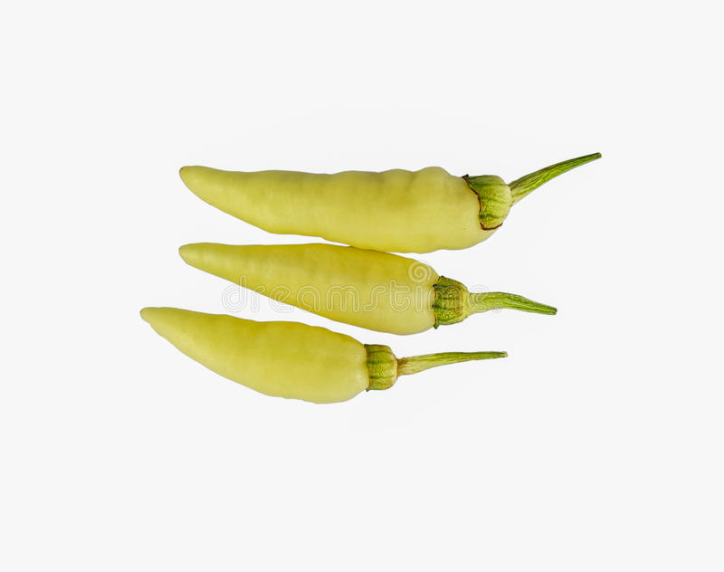 Pimentão fotografia de stock