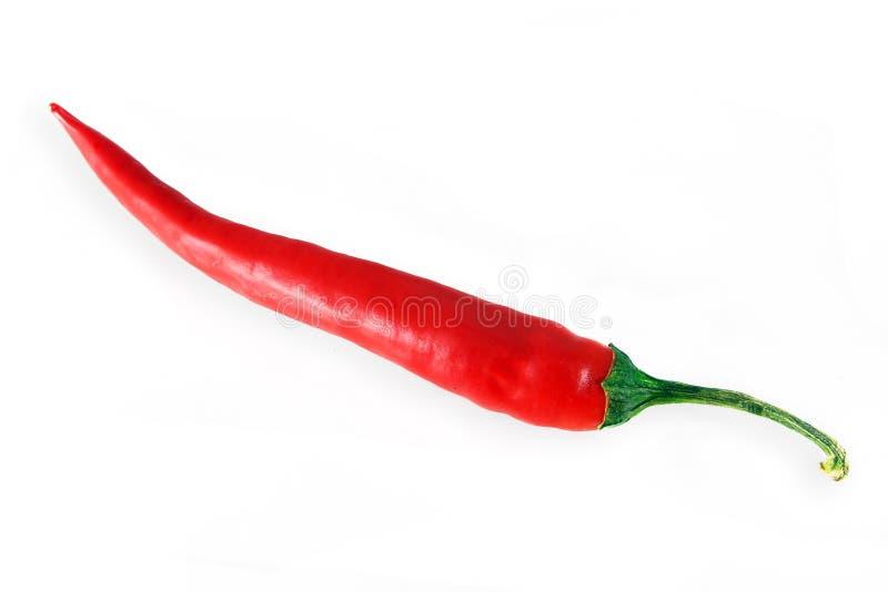 Download Pimentão isolado foto de stock. Imagem de paprika, ingredientes - 16866142