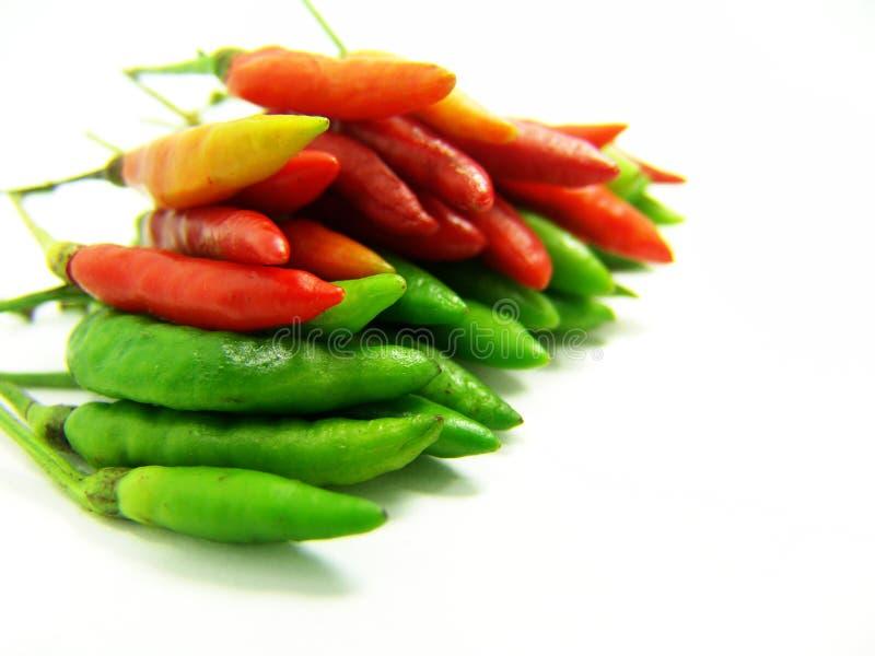 Pimentão tailandês vermelho e verde quente imagem de stock
