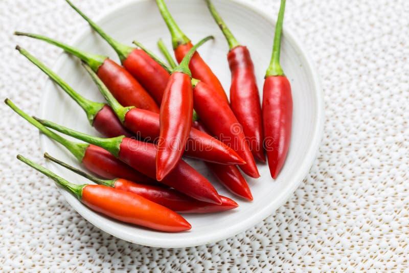 Pimentão vermelho imagem de stock
