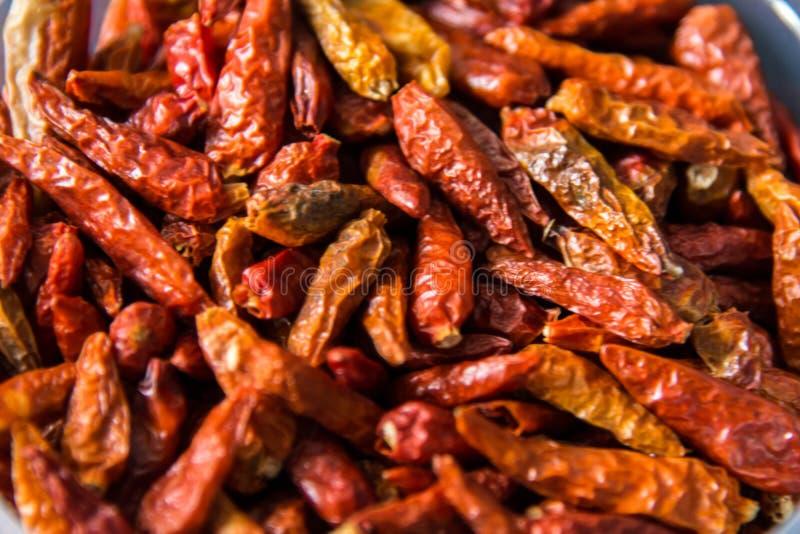 Pimentões secados vermelhos fotografia de stock royalty free