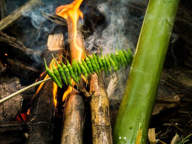 Pimentões verdes grelhados no fogo na floresta foto de stock royalty free