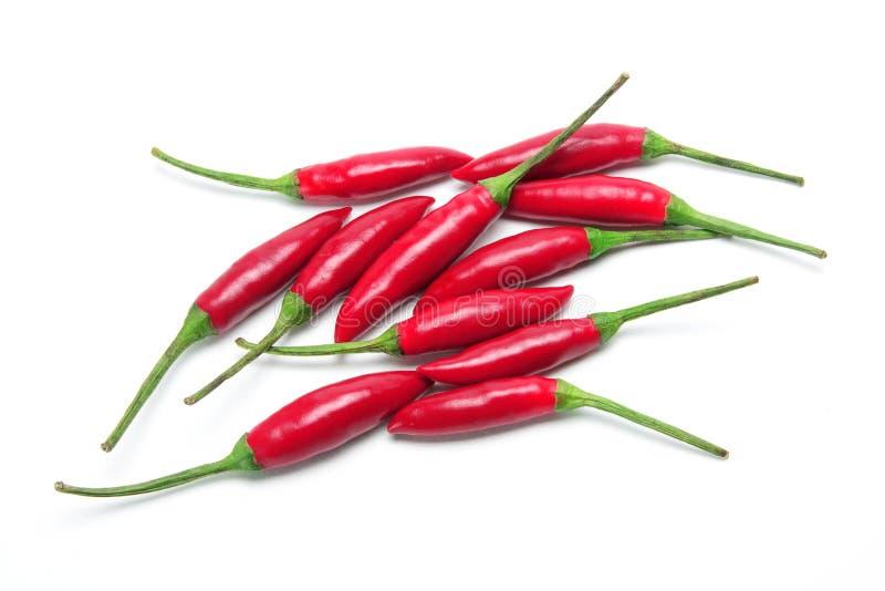 Download Pimentões vermelhos imagem de stock. Imagem de branco - 16865035