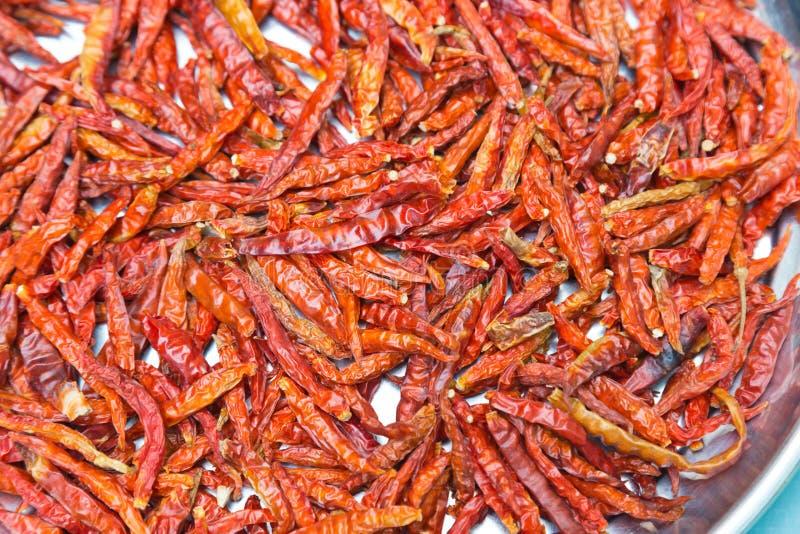 Pimentões vermelhos secados imagem de stock royalty free