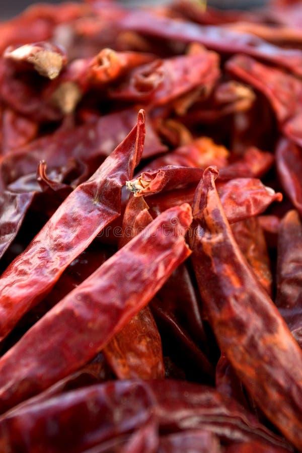 Pimentões vermelhos secados fotografia de stock royalty free