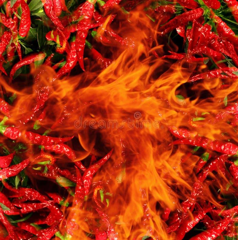 Piment dans les flammes photos stock