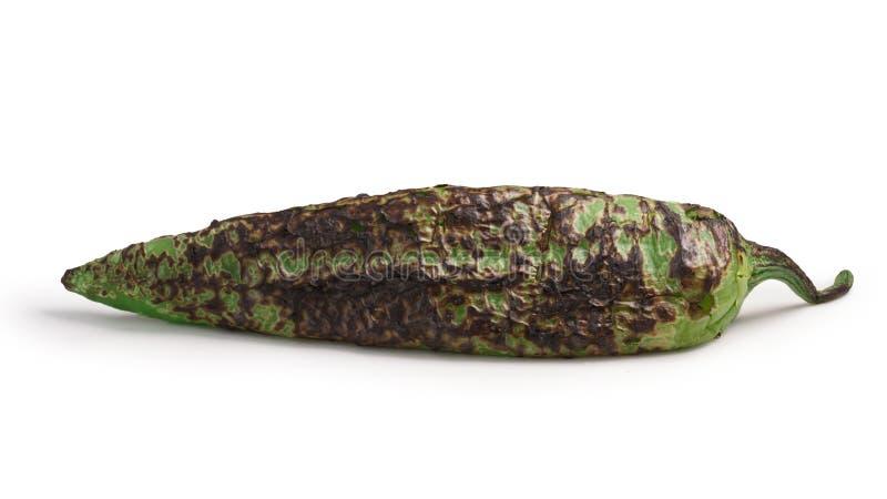 Piment rôti de vert de trappe, chemins photos stock
