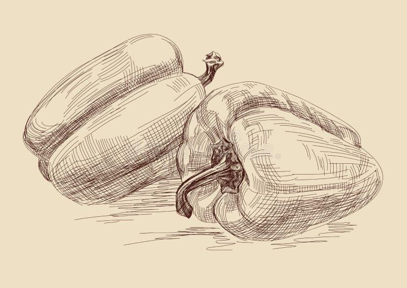 Pimenta ilustração royalty free