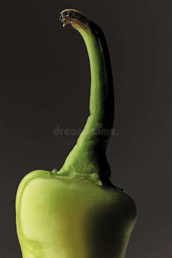 Pimenta fotografia de stock