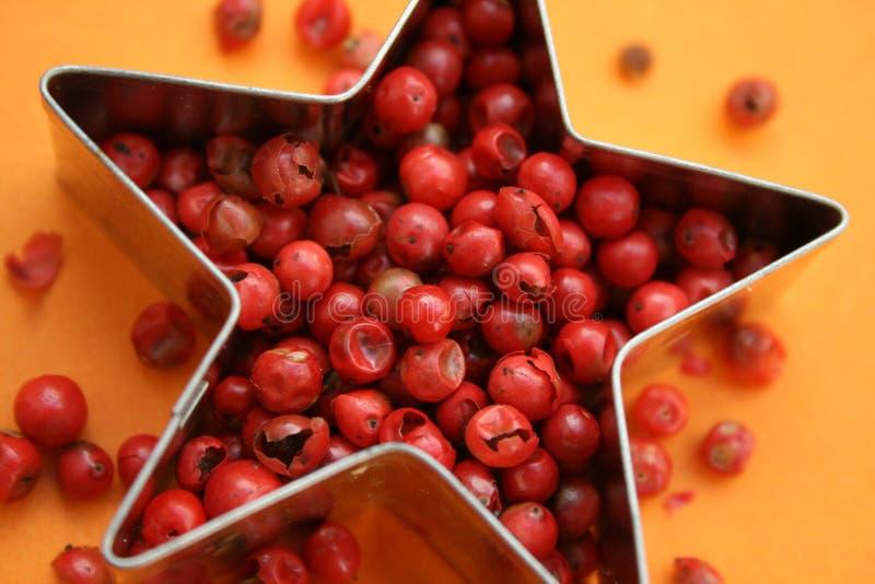 Pimenta cor-de-rosa fotos de stock royalty free